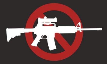 Is Gun Control necessary?